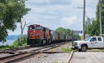 A grain train with CN power is stopped at Pepin