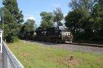 NS 8183 leads train 15T
