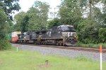 NS 4030 leads train 203