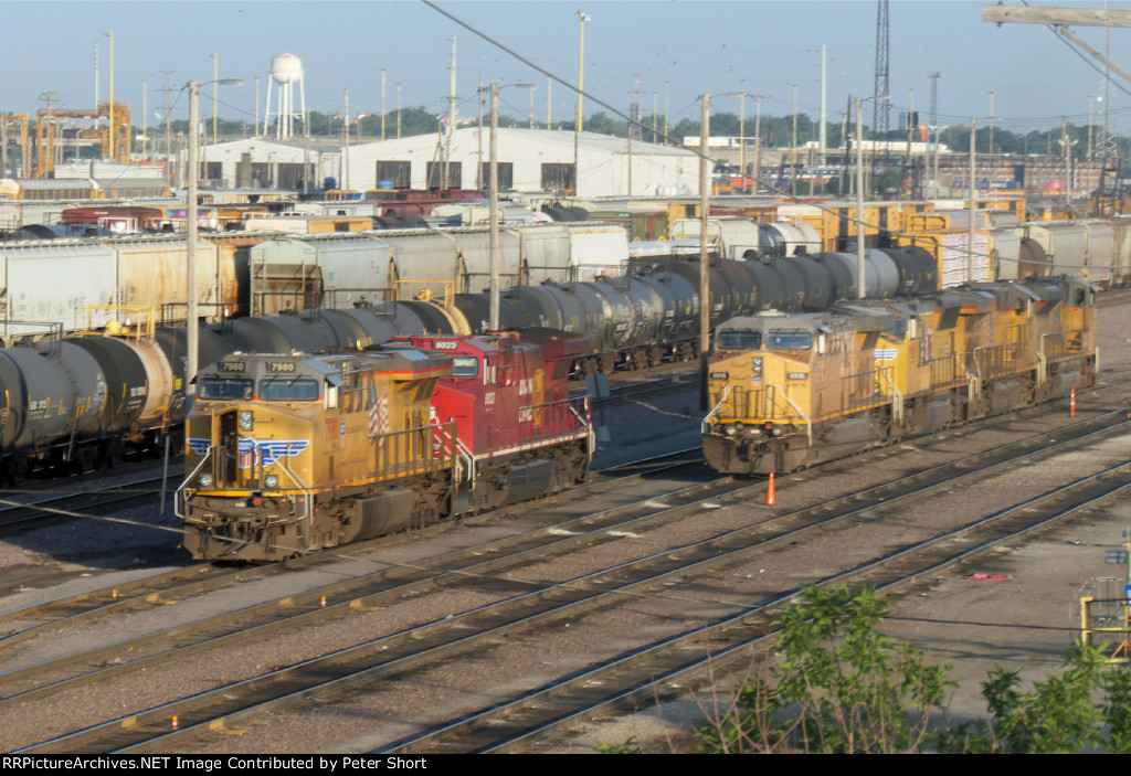 UP7980, CP8023, UP6916, UP3818, UP8061