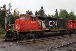 CN 5318