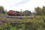 CN 2010 leads U789 through Wolf as it heads for Minntac