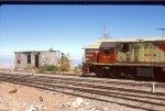 FCALP 13160 at Pampa Ossa