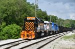 WE 7003, 6994 & 7006 look great in late Spring.
