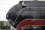 """N&W 611 """"J Built May 1950"""""""