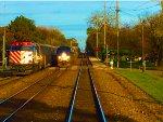 Metra 112 and Amtrak 204