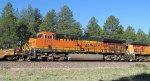 BNSF 3738