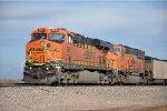 Paused loaded coal train