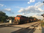 Large BNSF Lashup on CN