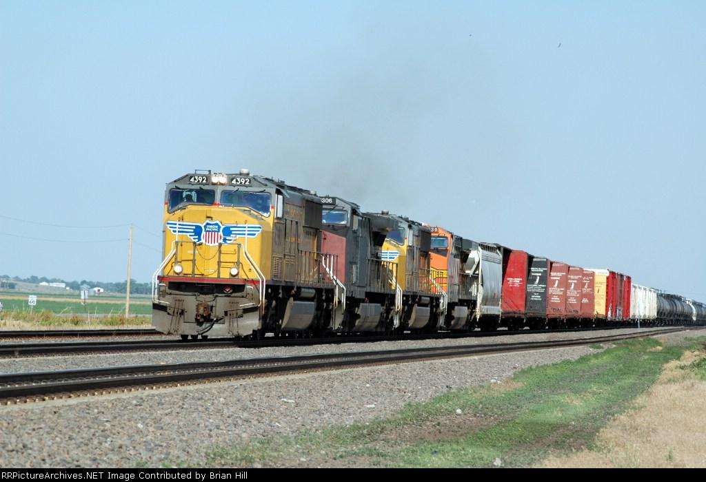 Colorful Manifest Train