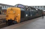 55010 'The King's Own Scottish Borderer'