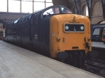 55008 'The Green Howards'