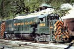 WP 2253 at Keddie