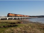 6 locomotive BNSF consist, mixed freight, N/B across Mud Bay Crossing