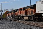 BNSF 8119 Roster.