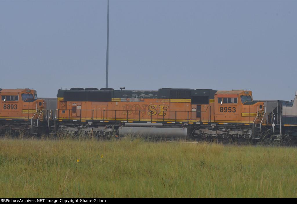 BNSF 8953 Roster shot.