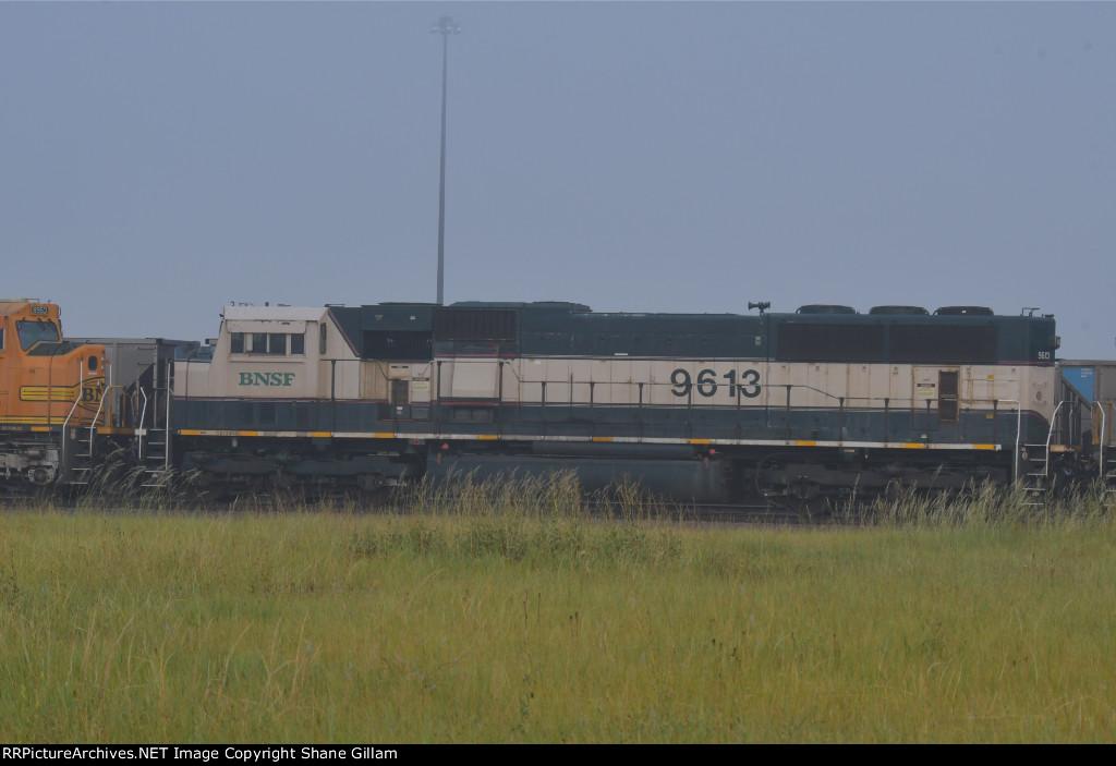 BNSF 9613 Roster shot.