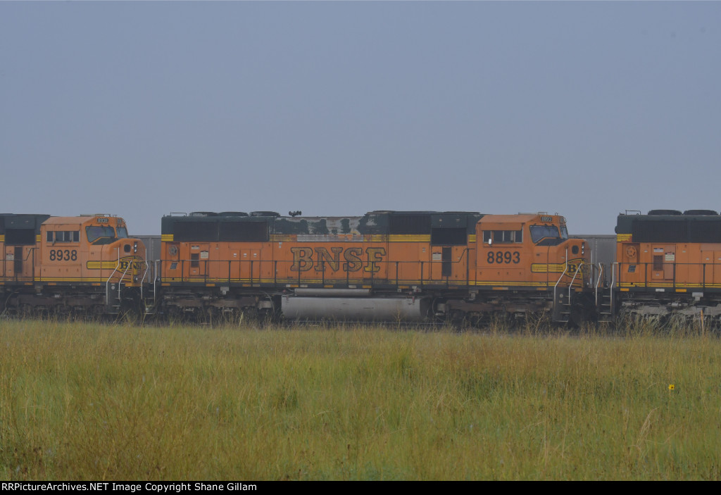 BNSF 8893 Roster shot.