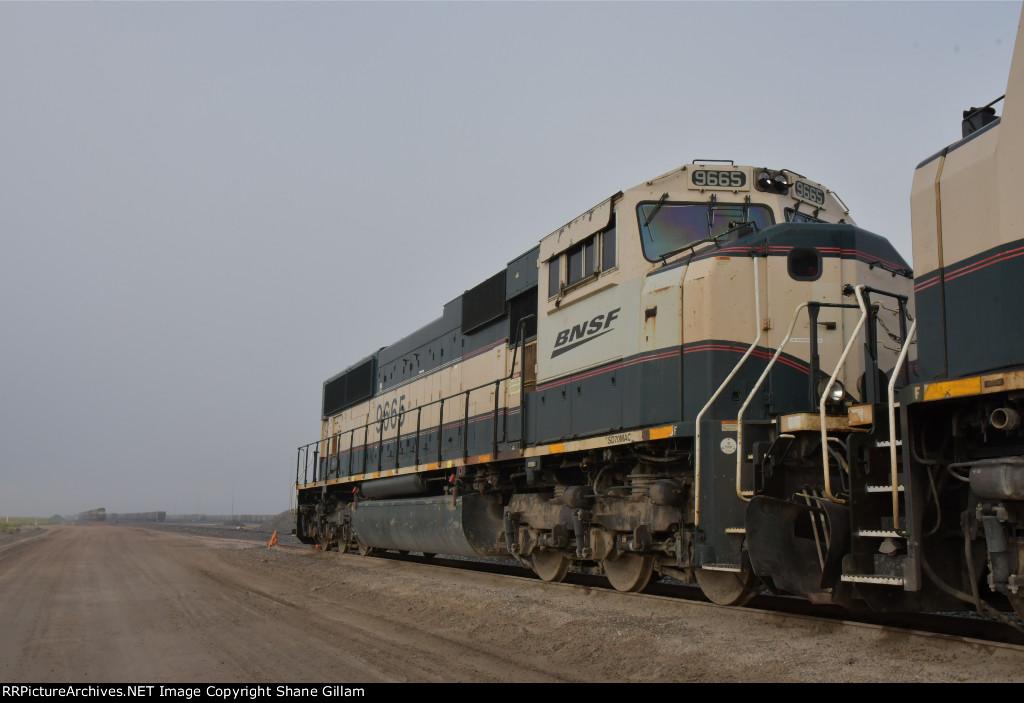 BNSF 9665 Roster shot.