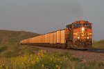 BNSF 5614 Races an empty west into the setting sun.