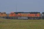 BNSF 9988 Roster shot.