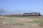 BNSF empty coal train heading for the Powder River Basin