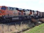 E/B BNSF Coal train (empty), Fisher Siding from Roberts Bank