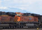 BNSF 6017, 25th Anniversary Heritage unit, a coal train waiting to be unloaded at the south west of Robert's Bank.