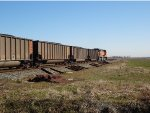 BNSF loaded W/B coal train with trailing DPU BNSF 6111, just exiting  the Hwy 99 overpass curve