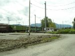 BNSF 3009/2092 S/B just about to enter Washington state from BC