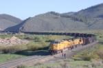 EB loaded coal train waiting in the siding