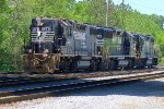 Local Norfolk Southern horses