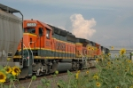 BNSF southbound in the siding