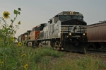 NS 9787 South
