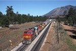 ATSF 110 East leaving Flagstaff