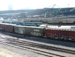 Neptune GenSets 809/808/805A. BCOL 20631 and Canpotex hoppers nearby.