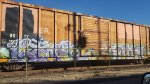 Globe Boxcar 4