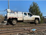 NS 218673 is new to rrpa.