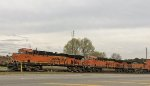 BNSF 4224 leads a trio of units waiting for green