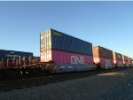Seaco Container #530996 and ONE Container #141684 Waits for Offloading at Dolores Yard