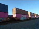 Beacon Container #518491 and ONE Container #141861 Passes Dolores Yard