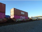 HMM Container #451369 and ONE Container #414579 Wiat for Offloading at Dolores Yard