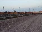 BNSF 5815, BNSF 3695, BNSF 3703, and BNSF 3702 arrive at the BNSF San Bernadino Yard pulling the Z-ALTSBD9-07 Hot Z Train on Their First Revenue Run Since leaving the Wabtec Locomotive Plant Fort Worth, Texas.