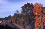 D&H Leaf Peepers Special on North Creek Branch