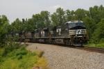 NS Train #111