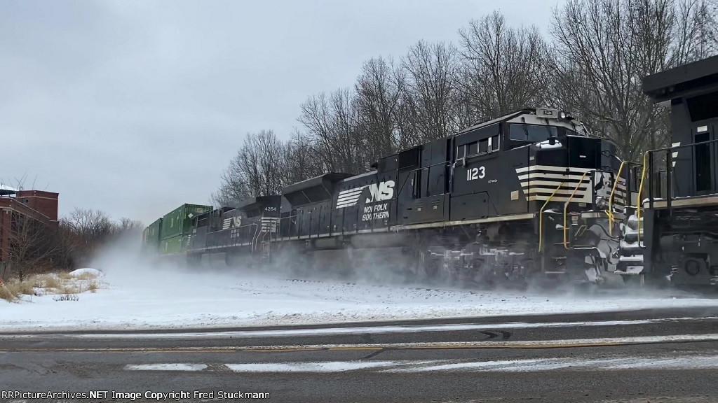 NS 1123