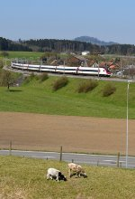 Mainline Zurich-St.Gallen: SBB 500 003