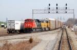 CN 8826