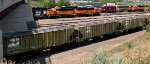 Classic Burlington Northern Covered Hoppers