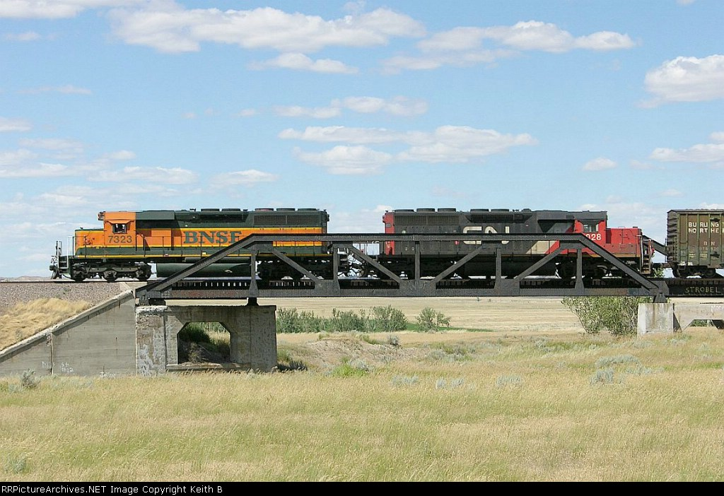 BNSF 7323 and CN 6028